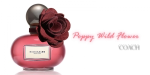 Coach Poppy Wild Flower