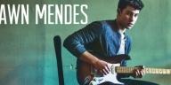 Shawn Mendes Signature II
